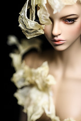 Spindrift 2 (Chengy Min) Tags: bjd iplehouse fid isis