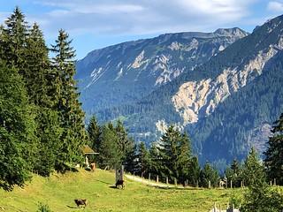 The Schloßanger Alp