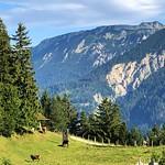 The Schloßanger Alp thumbnail