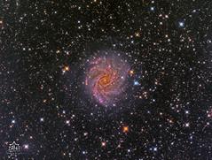 NGC 6946 - Fireworks Galaxy (Paolo De Salvatore) Tags: remote telescope 6946 ngc cosmos galassia galaxy zenit observatory osservatorio manciano gso rc truss riccardi 10micron gm1000 hps moravian g2 8300 lrgb astrodon fireworks ngc6946 deep sky remoto telescopio