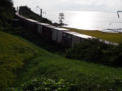 a freight train bound for Hokkaido (murozo) Tags: freight train railway container cargo winding evening sea rice field nikaho akita japan 貨物 列車 線路 鉄道 コンテナ 曲線 夕方 海 田圃 稲 にかほ 秋田 日本