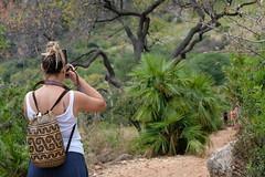 La fotografa (rafpas82) Tags: riservadellozingaro sicilia foto fotografa macuto albero bush cespuglio fujifilmx100t fuji xt20 55200fuji italy estate summer natura roadtrip