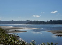 Yaquina Bay (dinannee) Tags: