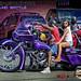 - 43732763184_9c351fc04b_s