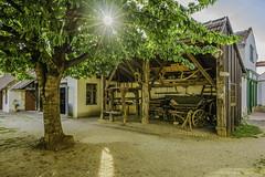 Vehicles for agriculture (a7m2) Tags: austria burgenland mönchhof dorfmuseum bauern winzer handwerker wagen leiterwagen pferdewagen landwirtschaft besucher travel touristen museum seewinkel neusiedlersee weinbau dorf