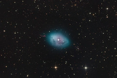 NGC 1360 (Terry Robison) Tags: ngc1360 terryrobison robinsegg nebula longexposure astrophotography deepsky