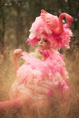 "TEATRONATURA ""Flamingo"" (valeriafoglia) Tags: flamingo plumage pink dress creature summer atmosphere art amazing fantasy fairy nature beautiful beauty creative composition capture colors soft light photography photo pretty fineart model makeup design stylist outfit costume"