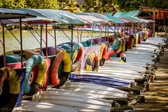 Morning rays (Goran Bangkok) Tags: colours dusitzoo water waterbike pedalboat bangkok thailand colors morning park leisure