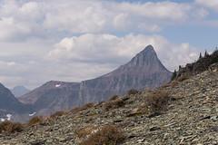 Eagle Ribs Mountain (hike734) Tags: