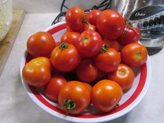 A big bowl of tomatoes (creed_400) Tags: tomatoes red belmont west michigan september summer