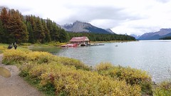 Maligne Lake and boat house in Jasper National Park, Canada, the largest natural lake in the Canadian Rockies (lhboudreau) Tags: jaspernationalpark alberta canada jasper park nationalpark outdoor outdoors tree trees pine pines pinetree pinetrees trail trails path paths people grass sky forest lake malignelake shore boathouse boat boats mountain mountains rockies canadianrockies water shrubs cloud clouds cloudy lakeshore bay