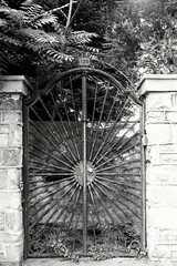 Behind old doors (Dimitar Dt) Tags: canon t90 canont90 fdn 3570 kantmere100 bnw bnwfilm 35mm filmcamera filmisnotdead 35mmfilm 35filmphotography sofia doors streetview