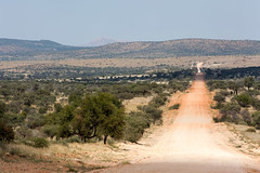 The Highway _5617-2 (hkoons) Tags: namibnaukluftnationalpark southernafrica streetview africa african namibia sesriem tree asphalt avenue gravel growth highway path plants road sand street vegetation