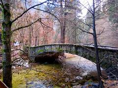 Late fall Bridge (morroelsie) Tags: bridge bridges yosemite yosemitevalley latefall california morroelsie