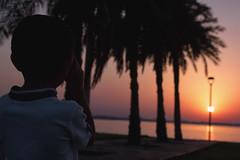 Telescope kid (iNezar) Tags: ifttt 500px telescope sun sunset orange sky pink tree dammam ksa saihat kid look looking lines black gray faded child children childhood see glass