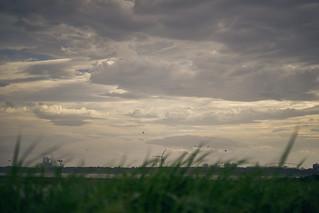 風の強い日/Windy day
