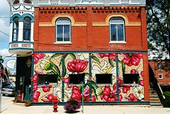 Stockton, Illinois Mural (Cragin Spring) Tags: building architecture turett flowers art artwork corner illinois il midwest unitedstates usa unitedstatesofamerica stockton stocktonil stocktonillinois