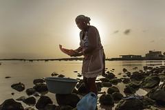 Daylife... (Renato Pizzutti) Tags: isoledicapoverde boavista donna pesce squamare mare tramonto controluce backlight renatopizzutti nikond750