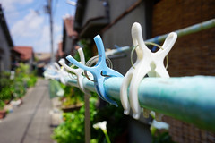 Laundry day is over (Eric Flexyourhead) Tags: settsu settsushi 摂津市 osaka 大阪 kansai 関西地方 japan 日本 city urban detail fragment backstreet laundry clothespin shallowdepthoffield sonyalphaa7 zeisssonnartfe35mmf28za zeiss 35mmf28