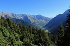 2018-08-27_10-35-31 (scorpio_bdca9) Tags: forest mountain landscape france isere