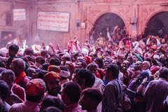 Praying Holi Crowd in Shri Banke Bihari Mandir (AdamCohn) Tags: abeer adamcohn bankebiharimandir hindu india shribankeybiharimandir vrindavan gulal holi pilgrim pilgrimage अबीर गुलाल होली