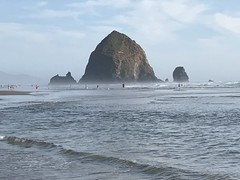 "03006CBF-957F-45D6-9F2B-71C572E23076 (komissarov_a) Tags: cannonbeach haystackrock oregoncoast 101 formations tidepools sunsets spectacular ocean viewpoints rocks attraction tides running hiking skyhigh scenic pacific west surprise beautiful sandy shoreline perfect wonderland remarkable refreshing unbeatable stunning scenery unforgettable vistas naturalareas komissarova streetphotography rgb iphone7 color rainforest downtown paradise dramatic enjoyable landscapes famous nationalgeographic magazine picturesque sidewalks artgalleries specialtyshops restaurants ""oneoftheworld's100mostbeautifulplaces"
