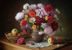 Still life with a bouquet of flowers and apples (Tatyana Skorokhod) Tags: stilllife bouquet flowers aster decor fruit berries hawthorn indoors