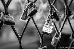 Isabel & Lars (reiernilsen) Tags: locks fence park frognerparken norge norway oslo reiernilsen wwwreiernilsencom canon 5dmkiii winter cold ice