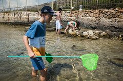 Sperlonga, 2018 (Antonio_Trogu) Tags: antoniotrogu streetphotography street candid urban unposed ricoh ricohgr ricohgrii 2018 sperlonga mare sea beach boy fishing net