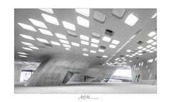 ScienceCenter - Wolfsburg - phaeno 1/4 (mmsig) Tags: wolfsburg niedersachsen deutschland de zahahadid architectur beton selbstverdichtend urban stadt sichtbeton phaeno 2018 mmsig highkey architecture concrete selfcompacting city exposedconcrete 80d ef1635mm f4l