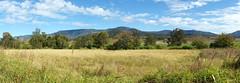 On Mulgowie Road (Stefan Jürgensen) Tags: queensland australia landscape panorama 5exp sony dslr a700 mulgowieroad thornton
