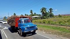 Bedford TJ (Karunesh.Naidu) Tags: bedford tj vintage history fiji road truck sugarcane flatbed trucking
