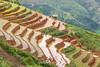_J5K0843.0617.Lao Chải.Mù Cang Chải.Yên Bái (hoanglongphoto) Tags: asia asian vietnam northvietnam northwestvietnam landscape scenery vietnamlandscape vietnamscenery terraces terracedfields transplantingseason sowingseeds hillside people landscapewithpeople canon canoneos1dsmarkiii hdr tâybắc yênbái mùcangchải phongcảnh ruộngbậcthang ruộngbậcthangmùcangchải mùacấy đổnước người phongcảnhcóngười sườnđồi mùcangchảimùacấy canonef70200mmf28lisiiusm ricceterracedinvietnam terracedfieldsinvietnam thehmong ngườihmông abstrat curve trừutượng đườngcong laochải