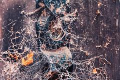 Spider lock out (Slimdaz) Tags: fujixt2 coventry fujifilm1855mm cobwebs darrensmithimages lock darrensmith slimdaz darren door