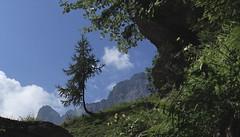 entre L'Au de Mex et Langemo (bulbocode909) Tags: valais suisse mex laudemex langemo montagnes nature arbres mélèzes nuages vert bleu rocherdegagnerie lavierge