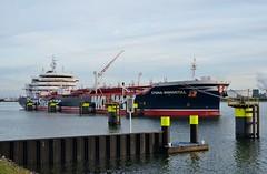 Stena Immortal (Hugo Sluimer) Tags: delandtong landtongrozenburg landtong portofrotterdam port haven rozenburg nederland holland zuidholland nlrtm onzehaven
