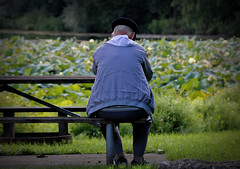 Memories of love (Millie Cruz) Tags: memories man wife tomb green grass waterlilies lake bench stoeversdampark lebanonpa oldman canoneosrebelt6i tamron18400 tamron18400mmf3563diiivchld