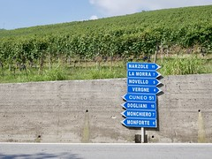 Which Way? (docwiththecamera) Tags: road way crossing barolo italy piemonte