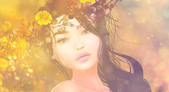 L'automne (Ticha31) Tags: lelutka glamaffair monso lode mudskin