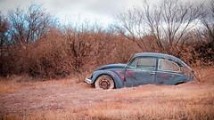 Madera Bug (explored 20 September 2018) (rob stalnaker) Tags: art vw volkswagen mandera arizona robstalnaker
