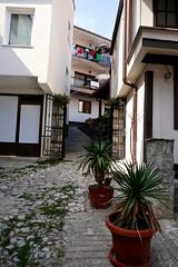 A narrow street, Ohrid, Macedonia (ali eminov) Tags: ohrid macedonia architecture buildings houses streets plants
