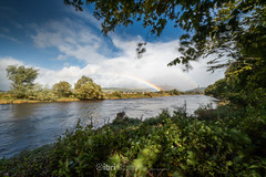Storm Ali - 19 Sep 2018 - 64 (ibriphotos) Tags: stormali rainbow wallacemonument forthvalleycollege doublerainbow stirling riverforth weather storm tree