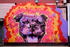 Vandalised Streetart (aLittleCoyote) Tags: streetart graffiti vandalised belfast dog art staffy mural colourful colorful