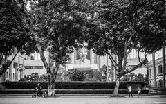 People in front of a Government Building (Hanoi, Vietnam. Gustavo Thomas © 2018) (Gustavo Thomas) Tags: hochiminh hanoi vietnam vietnamese building tree street streetphotography blackandwhite bnw mono monoart monochrome monocromático blancoynegro asia voyager travel voyage