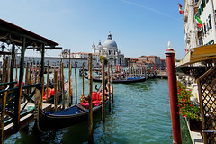 Venice (Neticola) Tags: venice venezia italy neticola sony a7 water gondola sun salute