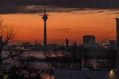 Good Morning (ARTUS8) Tags: flickr rhein stadt leuchtturmturm nikon28300mmf3556 skyline nikond800 sonnenaufgang sunrise rheinturm rhinetower