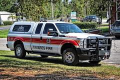 Tavares Battalion Chief (robtm2010) Tags: usa florida eastcoast canon canont3i t3i motorvehicle vehicle firedepartment tavares tavaresfiredepartment tavaresbattalionchief battalionchief ford pickup truck bc28 f250