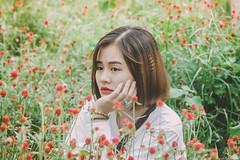 IMG_4617 (Haru2212) Tags: girl ngoàitrời người lightroom nature natural naturalbeauty canon sunday canon450d smile magic vietnamese vietnam flower portrait cây