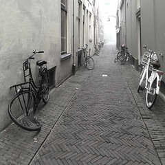 rêve de vélo (sculptorli) Tags: dalí rêve vélo bicycle bike deventer holland netherlands street fog blackandwhite dream blancoynegro overyssel sis mlha nebbia brouillard niebla 雾 梦 sueño sogno traum мечта сон велосипед bici bicicletta fahrrad surreal strada vicolo alley ruelle overijssel cof036mari cof036dmnq