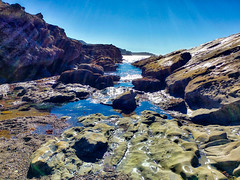 NorCal Travels 2018-16 (Maggie Houtz) Tags: norcal lensflare lgv20 phoneography pointlobos